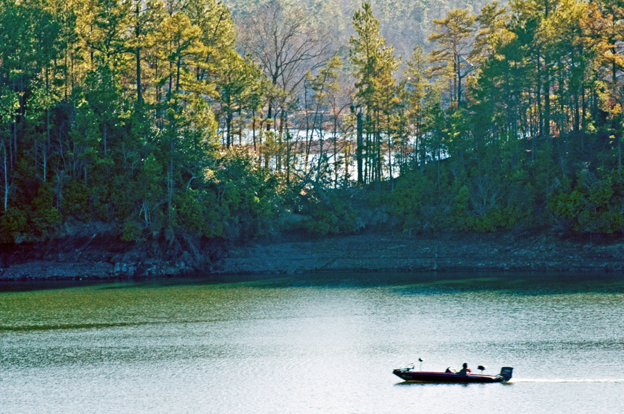 Fishing on Lake Martin